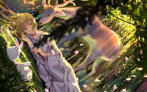 Picture forest, girl, deer, rabbits, Lancer, Fate / Grand Order