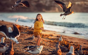 Picture birds, mood, girl