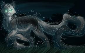 Picture cat, night, spirit, art