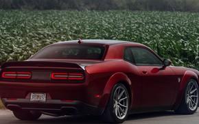 Picture Dodge, Challenger, 2018, Hellcat, SRT, Vossen