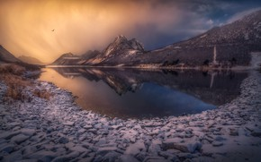 Picture winter, the sky, snow, flight, mountains, reflection, stones, bird, shore, pond