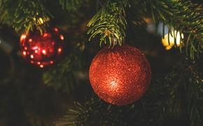 Picture winter, holiday, ball, Christmas, New year, needles, Christmas decorations, новогодние декорации