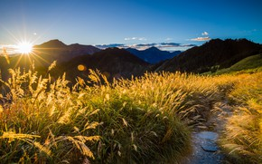 Picture summer, the sky, grass, the sun, clouds, rays, light, landscape, mountains, nature, glare, blue, dawn, …
