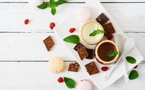 Picture chocolate, dessert, vanilla, panna cotta, Timolina
