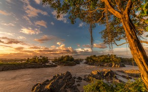 Wallpaper the sky, the sun, clouds, trees, branches, tropics, river, stones, for, Laos