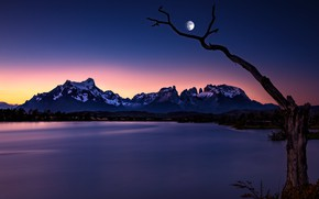 Picture mountains, night, lake, tree, the moon, Chile, Chile, Patagonia, Patagonia, Lake Pehoe, Torres del Paine …