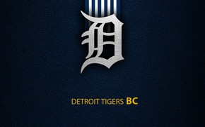 Picture wallpaper, sport, logo, baseball, Detroit Tigers