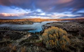 Picture landscape, grass, the sky, plant, view, pond, fog, nature, clouds, river, hills, Bush, vegetation, dal, ...