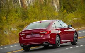 Picture red, Honda, Accord, sedan, rear view, 2018, four-door, 2.0T Sport