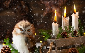 Picture new year, candles, garland, bumps, owlet, spruce branches, comosite