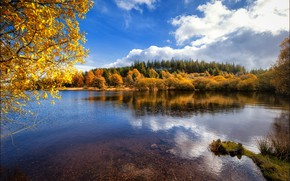 Picture autumn, forest, clouds, branches, reflection, blue, shore, foliage, view, the bottom, pond, the colors of …