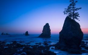 Picture sea, sunset, rocks, Washington State, Washington, Clallam Bay, Shi Shi Beach, Bay Clallam