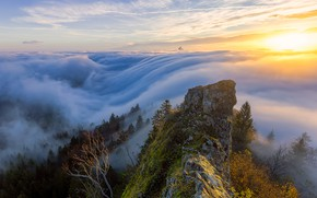 Picture forest, sunset, mountains, fog, rocks, Alps