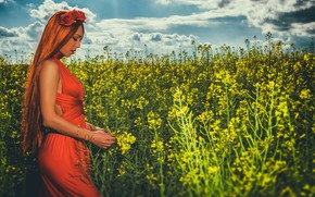 Picture field, summer, girl, dress, red, redhead, long hair, rape, Andrew Incognito