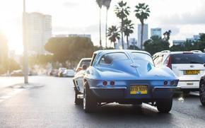 Picture the sun, city, Corvette, Chevrolet, muscle, muscle car, sun, the glare of the sun