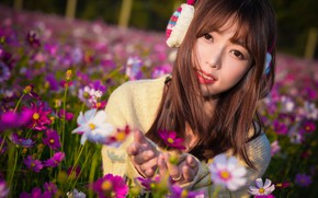 Picture flowers, background, face, petals, girl