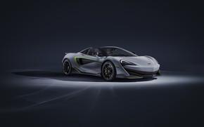 Picture McLaren, supercar, Spider, MSO, 2019, 600LT