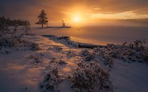 Picture winter, field, the sky, snow, dawn, Norway, Norway, Ringerike, Ole Henrik Skjelstad
