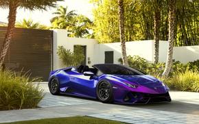 Picture Auto, Lamborghini, Machine, Sports car, Huracan, Lamborghini Huracan, Transport & Vehicles, Ayhan Aytan, by Ayhan …