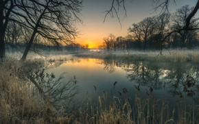Picture trees, landscape, branches, nature, fog, reflection, dawn, grass, pond, Bank, Robert Kropacz
