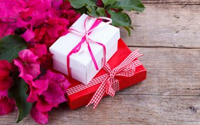 Picture flowers, bouquet, gifts
