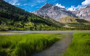 Picture grass, mountains, lake, Switzerland, Switzerland, Bernese Alps, The Bernese Alps, Lake Derborence, Derborence Lake