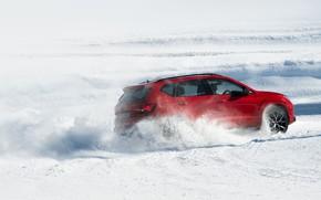 Picture snow, movement, SUV, Seat, Cupra, Ateca, 2019