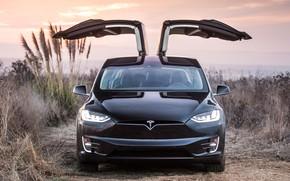 Picture Tesla, Model X, electic car