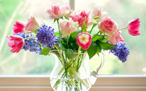 Picture bouquet, window, tulips, vase
