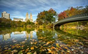 Wallpaper Bow Bridge, river, New York, Central Park, NYC, bridge