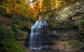Picture autumn, forest, rock, waterfall, Canada, Ontario, Canada, cascade, Ontario, Tiffany Falls, Водопад Тиффани