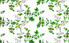 Picture flowers, branches, background, patterns