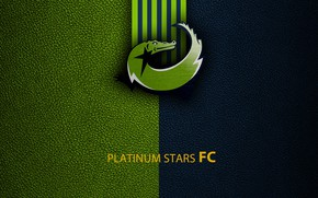 Picture wallpaper, sport, logo, football, Platinum Stars