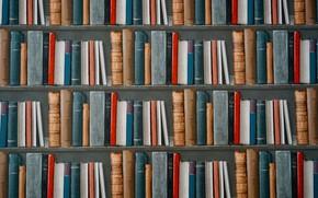Picture books, shelf, library