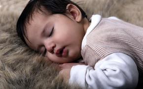 Picture boy, sleeping, fur