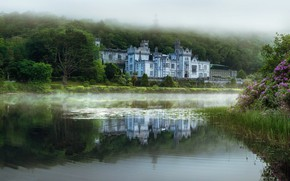 Picture greens, forest, summer, trees, flowers, fog, reflection, river, castle, shore, morning, architecture, pond