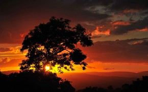 Picture landscape, sunset, nature, tree, beauty
