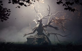 Picture forest, skull, fantasy, deity