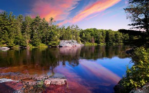 Picture forest, the sky, trees, sunset, lake