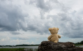 Picture sand, sea, beach, clouds, toy, bear, bear, Board, beach, bear, sea, teddy, lonely, cute, lonely