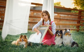 Picture dogs, pose, model, the fence, makeup, hairstyle, yard, blouse, linen, Board, beauty, sitting, on the …