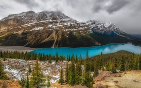Picture forest, mountains, lake, shore, Canada, Albert