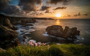 Picture sea, the sky, grass, the sun, clouds, rays, light, sunset, flowers, rocks, shore, view, beauty, …