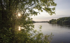 Picture summer, water, the sun, sunset, lake, river, tree, foliage
