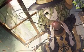 Picture hat, girl, Touhou, Touhou, Touhou