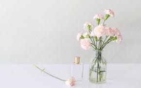 Picture flowers, bouquet, perfume, vase, clove