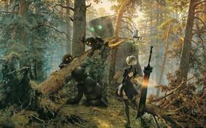 Wallpaper forest, girl, cyborg, art, nier, automata, YoRHa No.2 Type B