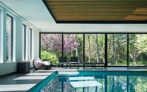 Picture Villa, interior, pool, the room, Luxury House, villa Echo