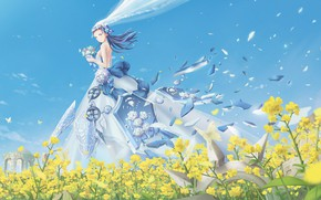 Picture girl, flowers, the wind, the bride, veil