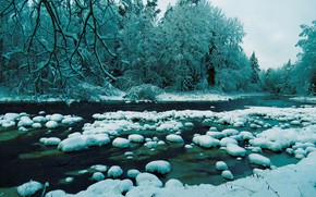 Picture Winter, Stream, Trees, Snow, Forest, Stones, Branch, River, Rapids